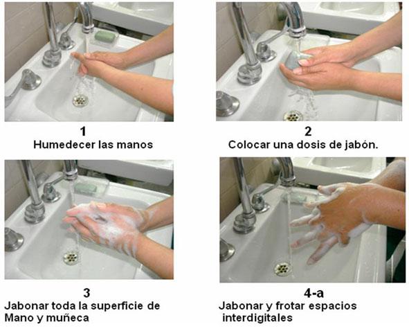 Seguridad e higiene en la cocina blog servinoxblog for Lavado de manos en la cocina