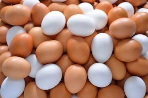 14-10-5-dia-mundial-del-huevo,-huevos-en-la-dieta,-el-sitio-avicola,-chris-wright,shutterstock_128151113